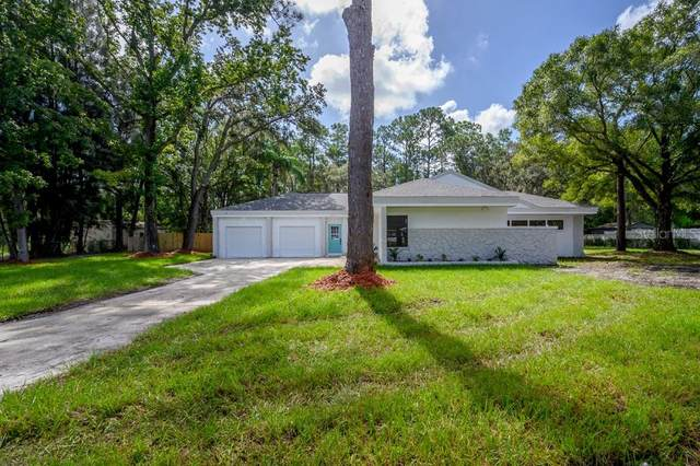 1566 Woodfield Court, Lutz, FL 33558 (MLS #T3263348) :: Rabell Realty Group
