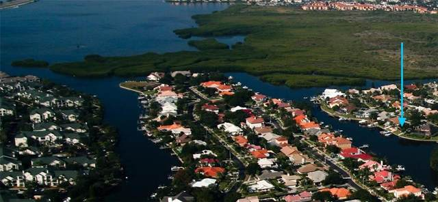 4143 Saltwater Boulevard, Tampa, FL 33615 (MLS #T3263470) :: Team Bohannon Keller Williams, Tampa Properties