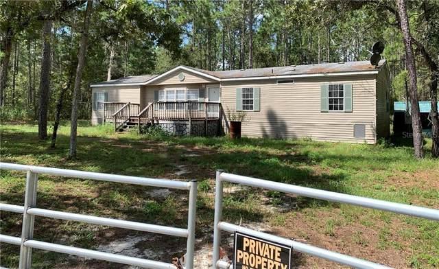 9393 American Lane, Brooksville, FL 34601 (MLS #T3263720) :: Team Bohannon Keller Williams, Tampa Properties