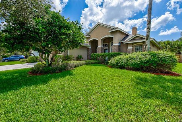 10237 Millport Drive, Tampa, FL 33626 (MLS #T3263754) :: The Duncan Duo Team