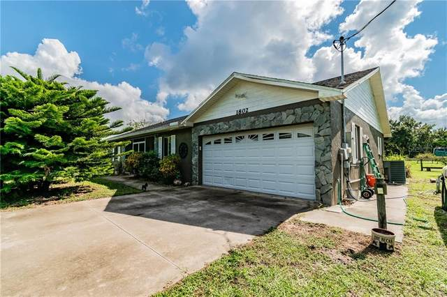 1802 Wagonwheel Road, Wimauma, FL 33598 (MLS #T3263867) :: The Price Group