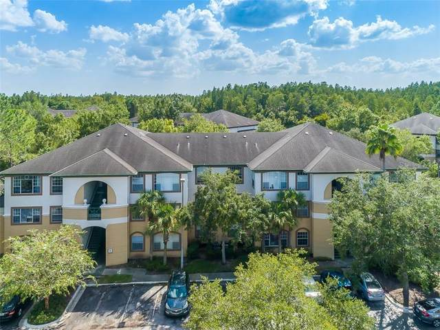 17101 Carrington Park Drive #405, Tampa, FL 33647 (MLS #T3263904) :: Cartwright Realty