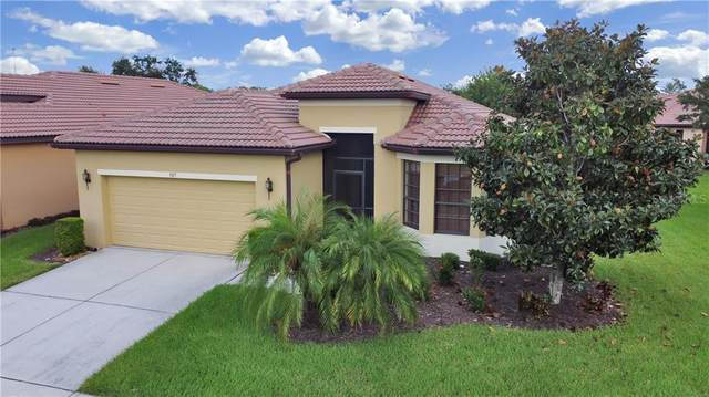 307 Cedar Falls Drive, Apollo Beach, FL 33572 (MLS #T3263914) :: Premium Properties Real Estate Services