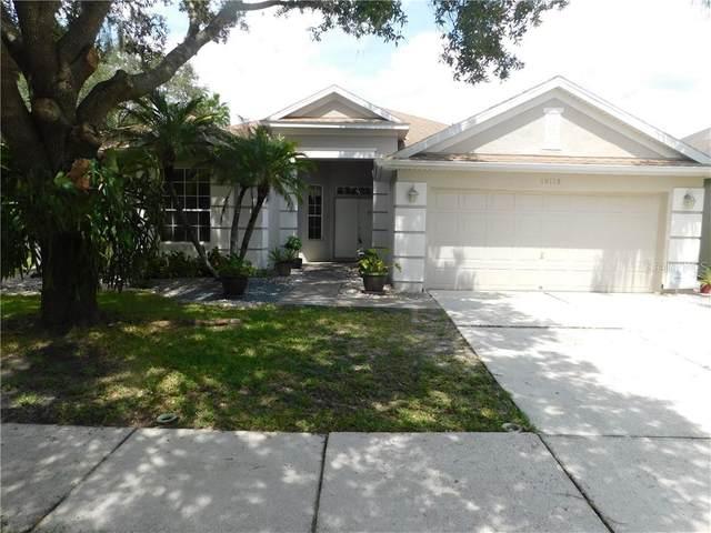 19113 Golden Cacoon Place, Lutz, FL 33558 (MLS #T3263929) :: Delgado Home Team at Keller Williams