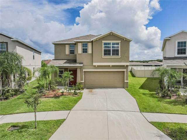 6817 Blue Moon Way, Ruskin, FL 33573 (MLS #T3263940) :: The Price Group