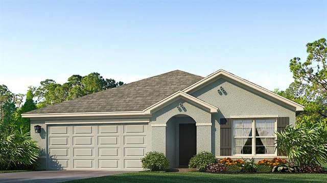 12155 High Rock Way, Parrish, FL 34219 (MLS #T3264063) :: Rabell Realty Group