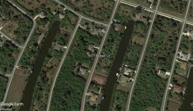 9377 Bluegill Circle, Port Charlotte, FL 33981 (MLS #T3264220) :: Team Borham at Keller Williams Realty