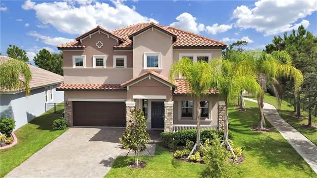 11876 Frost Aster Drive, Riverview, FL 33579 (MLS #T3264240) :: The Heidi Schrock Team