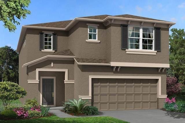 19616 Breynia Drive #540, Lutz, FL 33558 (MLS #T3264268) :: Delgado Home Team at Keller Williams