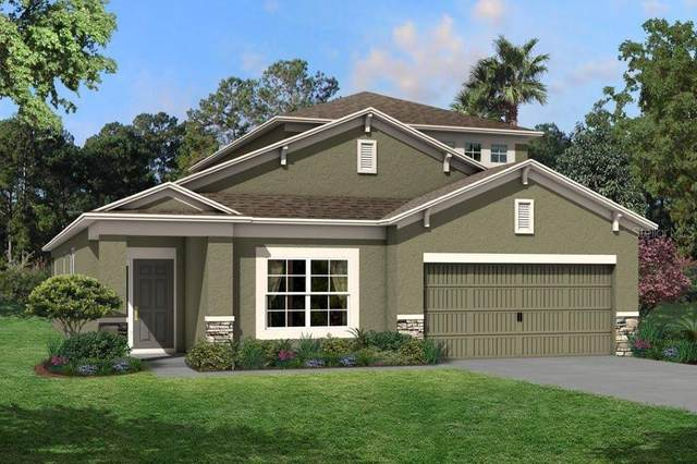 20029 Stone Pine Circle #806, Lutz, FL 33558 (MLS #T3264300) :: Delgado Home Team at Keller Williams