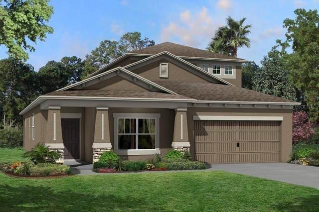 19993 Stone Pine Circle #801, Lutz, FL 33558 (MLS #T3264314) :: Delgado Home Team at Keller Williams
