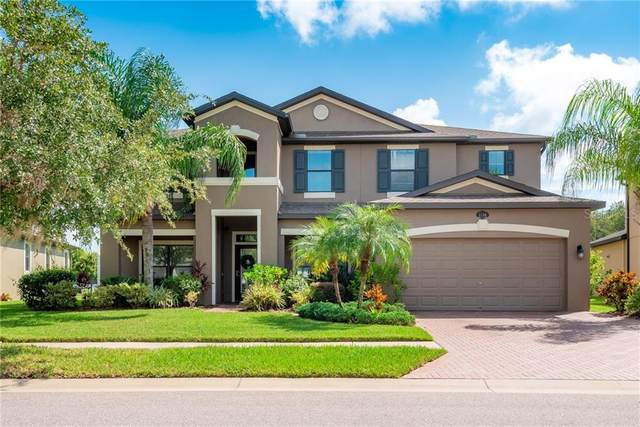 1704 Cameron Court, Trinity, FL 34655 (MLS #T3264325) :: Premier Home Experts