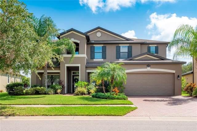 1704 Cameron Court, Trinity, FL 34655 (MLS #T3264325) :: Delgado Home Team at Keller Williams