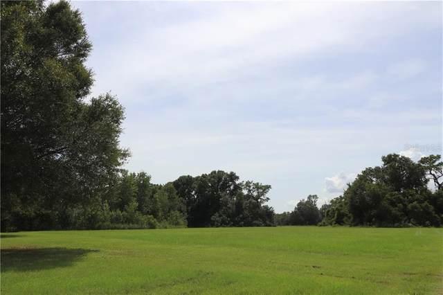 7205 Brittani Reserve Place, Plant City, FL 33565 (MLS #T3264415) :: The Heidi Schrock Team