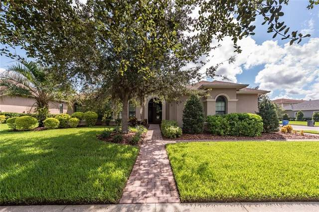 5910 Alana Leigh Place, Lithia, FL 33547 (MLS #T3264422) :: Mark and Joni Coulter | Better Homes and Gardens
