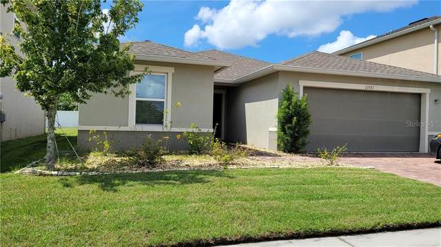 11501 Brighton Knoll Loop, Riverview, FL 33579 (MLS #T3264505) :: Carmena and Associates Realty Group