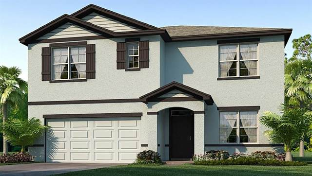 11607 Miracle Mile Drive, Riverview, FL 33578 (MLS #T3264546) :: The Duncan Duo Team
