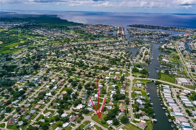 501 N Florida Circle, Apollo Beach, FL 33572 (MLS #T3264574) :: Alpha Equity Team