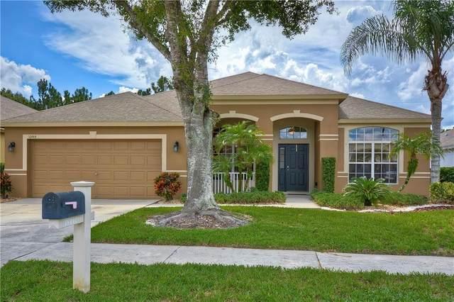 16444 Nikki Lane, Odessa, FL 33556 (MLS #T3264578) :: Team Bohannon Keller Williams, Tampa Properties
