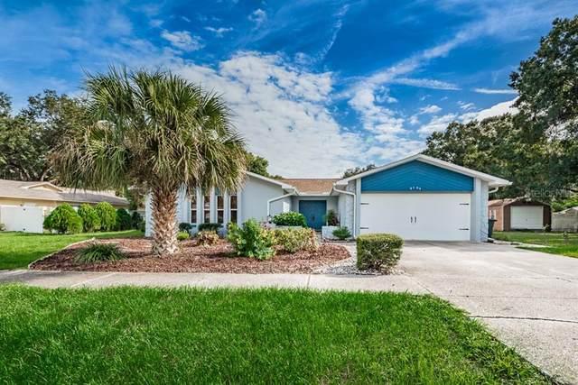 9104 Sacramento Drive, New Port Richey, FL 34655 (MLS #T3264731) :: Premier Home Experts