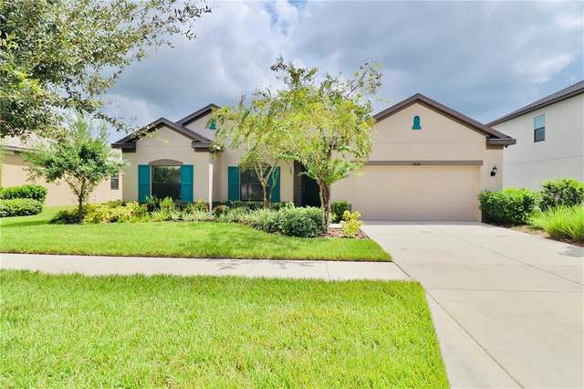2926 Shetland Ridge Drive, Valrico, FL 33596 (MLS #T3264744) :: Mark and Joni Coulter | Better Homes and Gardens
