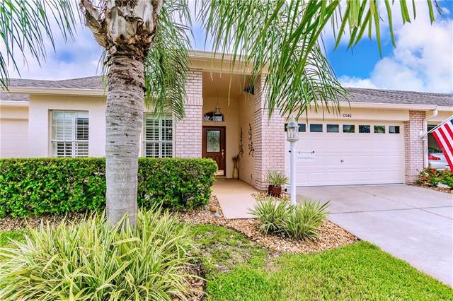 12140 Arron Terrace, Trinity, FL 34655 (MLS #T3264799) :: Premier Home Experts