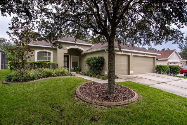1221 Emerald Hill Way, Valrico, FL 33594 (MLS #T3264829) :: Griffin Group