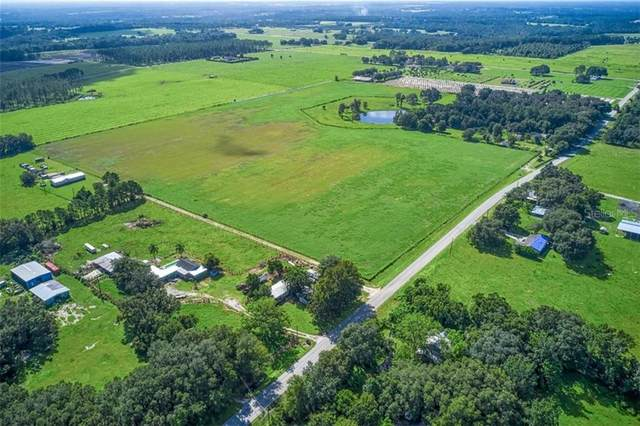 15310 Lake Iola Road, Dade City, FL 33523 (MLS #T3264932) :: Mark and Joni Coulter | Better Homes and Gardens
