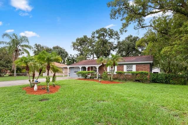 904 W Hiawatha Street, Tampa, FL 33604 (MLS #T3264940) :: Team Bohannon Keller Williams, Tampa Properties