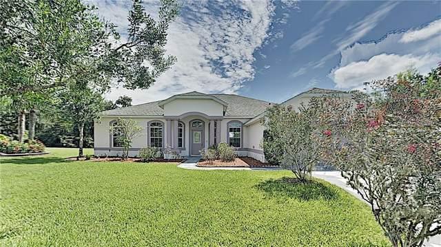 3800 Arbordale Court, Leesburg, FL 34748 (MLS #T3264985) :: The Price Group