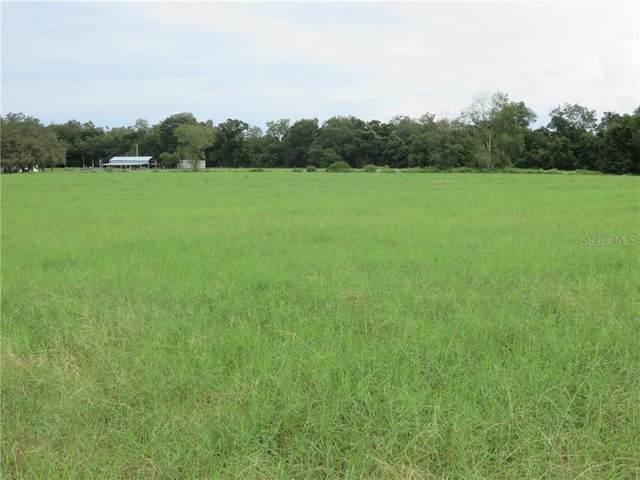 Old Lakeland Hwy, Zephyrhills, FL 33540 (MLS #T3265083) :: Team Buky
