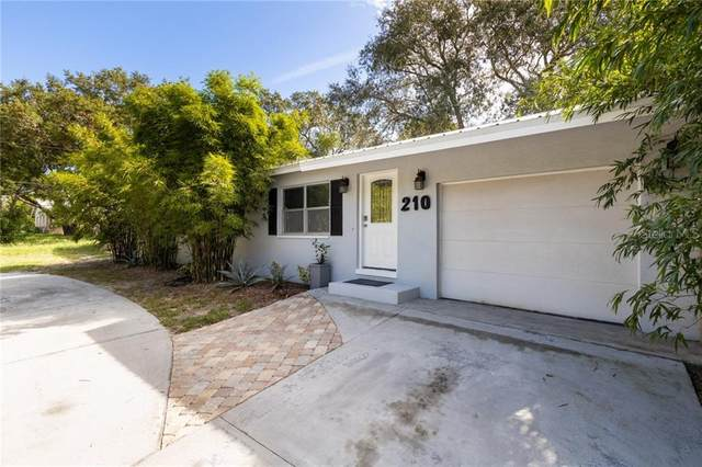 210 N Levis Avenue, Tarpon Springs, FL 34689 (MLS #T3265100) :: Premier Home Experts