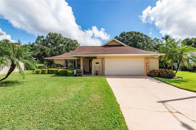 Address Not Published, Tampa, FL 33624 (MLS #T3265220) :: Team Borham at Keller Williams Realty