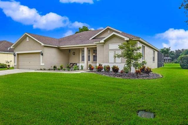 2922 Spring Hammock Drive, Plant City, FL 33566 (MLS #T3265225) :: The Heidi Schrock Team
