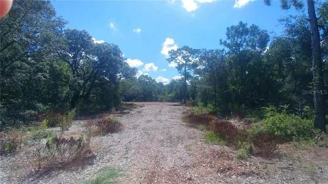 10553 Hazel Avenue, Hudson, FL 34669 (MLS #T3265250) :: Team Borham at Keller Williams Realty