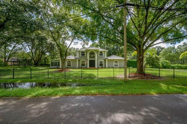 1411 Newberger Road, Lutz, FL 33549 (MLS #T3265257) :: Team Bohannon Keller Williams, Tampa Properties