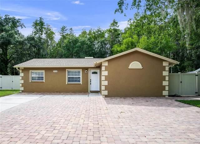 14116 Arbor Hills Road, Tampa, FL 33625 (MLS #T3265320) :: U.S. INVEST INTERNATIONAL LLC