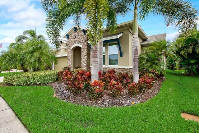 6407 Blue Sail Lane, Apollo Beach, FL 33572 (MLS #T3265351) :: The Price Group