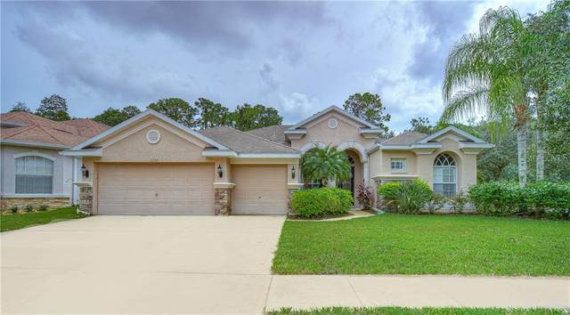12724 Stanwyck Circle, Tampa, FL 33626 (MLS #T3265420) :: Cartwright Realty