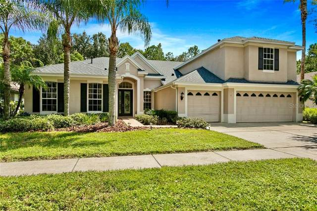 19221 Autumn Woods Avenue, Tampa, FL 33647 (MLS #T3265425) :: Team Bohannon Keller Williams, Tampa Properties