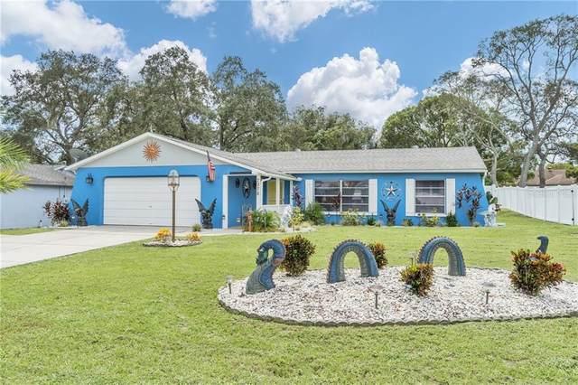 7378 Turf Lane, Spring Hill, FL 34606 (MLS #T3265431) :: Cartwright Realty