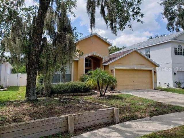 7323 Brightwater Oaks Drive, Tampa, FL 33625 (MLS #T3265465) :: Team Bohannon Keller Williams, Tampa Properties