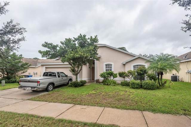10636 Carloway Hills Drive, Wimauma, FL 33598 (MLS #T3265557) :: The Price Group