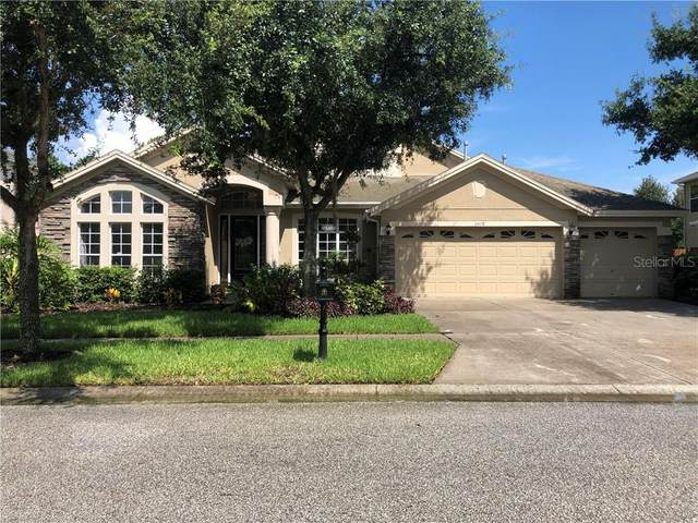 6618 Thornton Palms Drive, Tampa, FL 33647 (MLS #T3265590) :: Team Bohannon Keller Williams, Tampa Properties