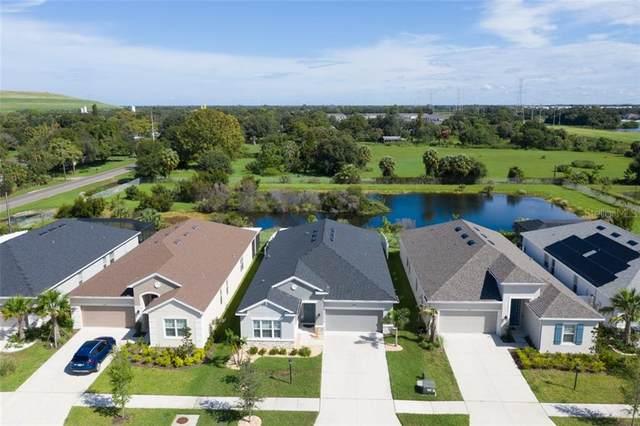 7908 Lotus Creek Court, Riverview, FL 33578 (MLS #T3265636) :: The Heidi Schrock Team
