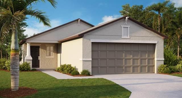 15701 Fort Island Place, Apollo Beach, FL 33572 (MLS #T3265643) :: Team Pepka