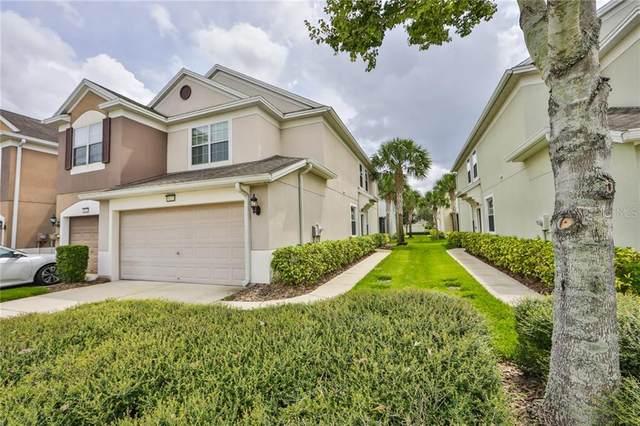 10221 Red Currant Court, Riverview, FL 33578 (MLS #T3265682) :: The Heidi Schrock Team
