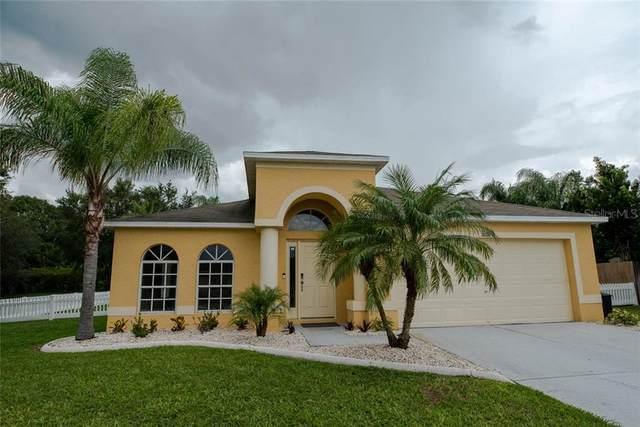 10064 Creek Bluff Drive, Riverview, FL 33578 (MLS #T3265694) :: The Heidi Schrock Team