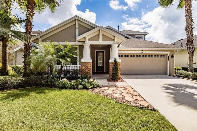 20125 Heron Crossing Drive, Tampa, FL 33647 (MLS #T3265714) :: CENTURY 21 OneBlue