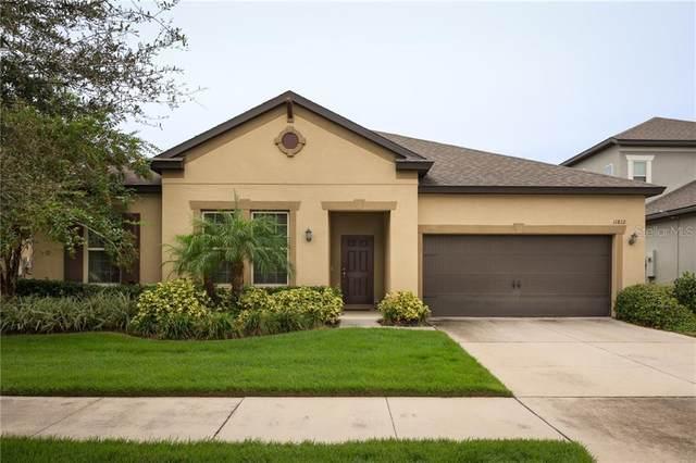 11812 Cross Vine Drive, Riverview, FL 33579 (MLS #T3265718) :: The Heidi Schrock Team